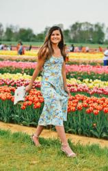 Two Garden Party Dresses Under $60
