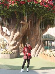 BEAUTIFUL LAND; EVERLAND KOREA